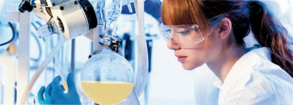 Formulazione di prodotti alimentari innovativi | TGD